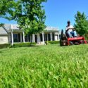 Quick-Release and Slow-Release Lawn Fertilizers