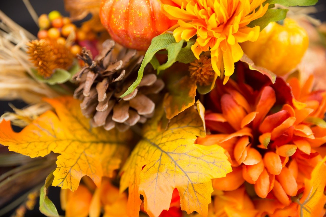 What You Need to Know about Fall Planting