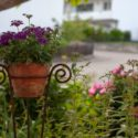 How to Make Your Landscape More Eco-Friendly